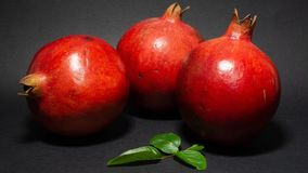 Bright juicy pomegranate fruit, black background, in the photo three fruits are located nearby. Green foliage is present, close-up stock photo