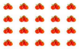 Bright juicy red color of a branch of a tomato pattern on a white base, many fruits of an endless Royalty Free Stock Photography