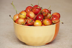 Bright juicy sweet cherries Stock Image