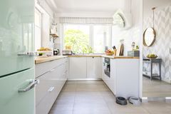 Bright kitchen interior with fresh fruits and two animal bowls p. Laced on the floor in real photo with window royalty free stock photo