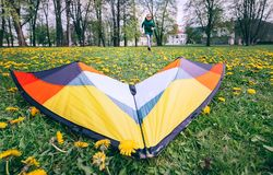 Bright kite is on the green meadow Stock Images