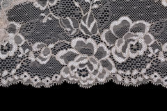 Bright lace with floral pattern Stock Images