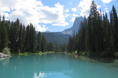 Bright lake view Stock Images