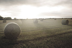 Bright landscape with bales of straw. Kind of amazing Bright landscape with bales of straw Stock Photo