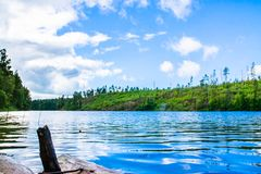 Bright landscape with a quiet pond shot from the low point. At summer stock images
