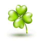 Bright leaf clover on white background. With soft shadow Royalty Free Stock Photos