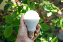 Bright LED bulb. In hand with nature background Stock Images