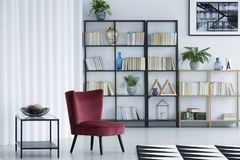 Bright library living room interior with potted plants and burgundy armchair. Bright library living room interior with decorations, potted plants and burgundy stock photos