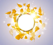 Bright light autumn floral concept with round golden frame, maple and oak leaves Stock Photography