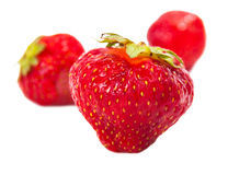 Bright light glowing strawberries Royalty Free Stock Photos