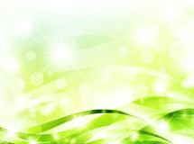 Bright light green background Royalty Free Stock Image