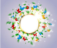 Bright light spring background floral concept with butterfly, round golden frame, leaves, daisies. Vector sunshine flower background with chamomile and sparks Stock Photography