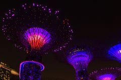 Bright lights in the night show in Singapore. Iron Supertrees with magic night illumination Royalty Free Stock Image
