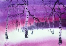 Bright lilac sunset in the forest royalty free stock images