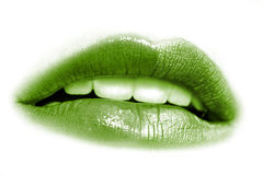 Bright lips Royalty Free Stock Images