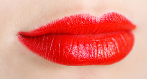 Bright lips Stock Image