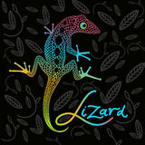 Bright lizard on a dark background Royalty Free Stock Images