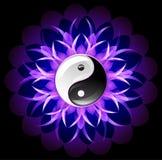 Bright lotus yin yang Stock Image