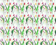 Bright lovely beautiful spring vertical  pattern of tulips red yellow pink purple lavender flowers watercolor. Hand sketch Royalty Free Stock Image