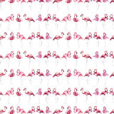 Bright lovely tender gentle sophisticated wonderful tropical hawaii animal wild summer beach pink flamingo pattern watercolor hand. Sketch. Perfect for stock illustration