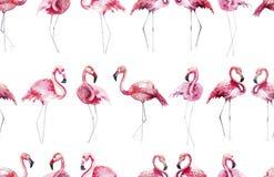 Bright lovely tender gentle sophisticated wonderful tropical hawaii animal wild summer beach pink flamingos pattern watercolor han Stock Image