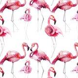 Bright lovely tender gentle sophisticated wonderful tropical hawaii animal wild summer beach pink flamingos pattern watercolor han Royalty Free Stock Photo