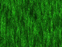 Bright lush green grass texture Royalty Free Stock Photos