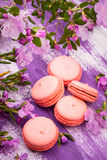 Bright macaroons Royalty Free Stock Images