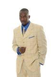 bright man suit Στοκ Φωτογραφία