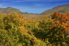 Bright maples on hillside overlooking Sandwich Range, New Hampsh Stock Image