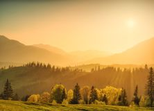Bright misty evening. Spring mountain valley. Carpathians, Ukraine, Europe Stock Photos
