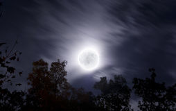 Bright moon on fall night with clouds and foliage. Bright full moon on an autumn night with clouds and fall foliage in the foreground royalty free stock photos