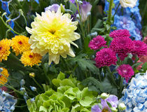 Bright multicolor bouquet made of different flowers Stock Image