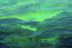 Bright multicolor surface of water stock image