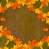 Bright multicolored autumn leaves on abstract background Royalty Free Stock Images