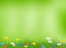 Bright multicolored background  with flowers Stock Photography