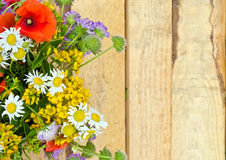 bright multicolored bouquet of wildflowers daisies, poppies, clover stock photos