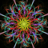 Bright multicolored fractal flower Stock Images