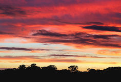 Bright multicolored sunset Royalty Free Stock Photos