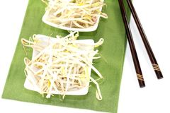 Bright mung bean sprouts Stock Photo