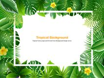 Bright natuer background with jungle plants. tropical leaves. Bright tropical background with grass plants. Exotic pattern with tropical grass. Vector Stock Photography