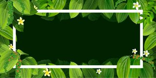 Bright natuer background with jungle plants. tropical leaves. Bright tropical background with leaves plants. Exotic pattern with tropical grass. Vector Royalty Free Stock Photos