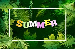 Bright natuer background with jungle plants. tropical leaves. Bright tropical background with leaves plants. Exotic pattern with tropical flower. Vector Royalty Free Stock Image