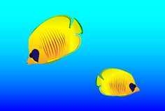 Bright oceanic small fishes Stock Photos