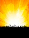 Bright orange background Royalty Free Stock Image