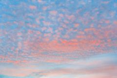 Orange cirrocumulus clouds on a background of azure sky. Bright orange cirrocumulus clouds on a background of azure sky royalty free stock photos
