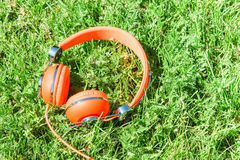Bright orange colorful headphones on fresh sward Stock Image