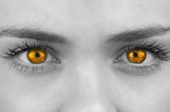 Bright orange eyes on female face Royalty Free Stock Images