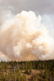 Bright orange forest fire clouds in Yellowstone Royalty Free Stock Photo
