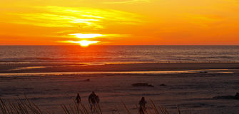 Bright Orange and Golden Sunset Royalty Free Stock Photography